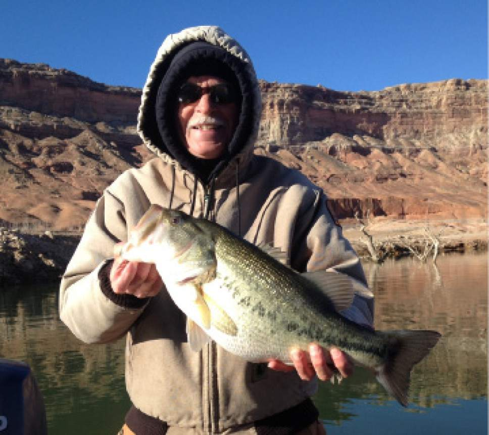 Lake mohave fishing report january 2017 lake mohave for Az game and fish fishing report