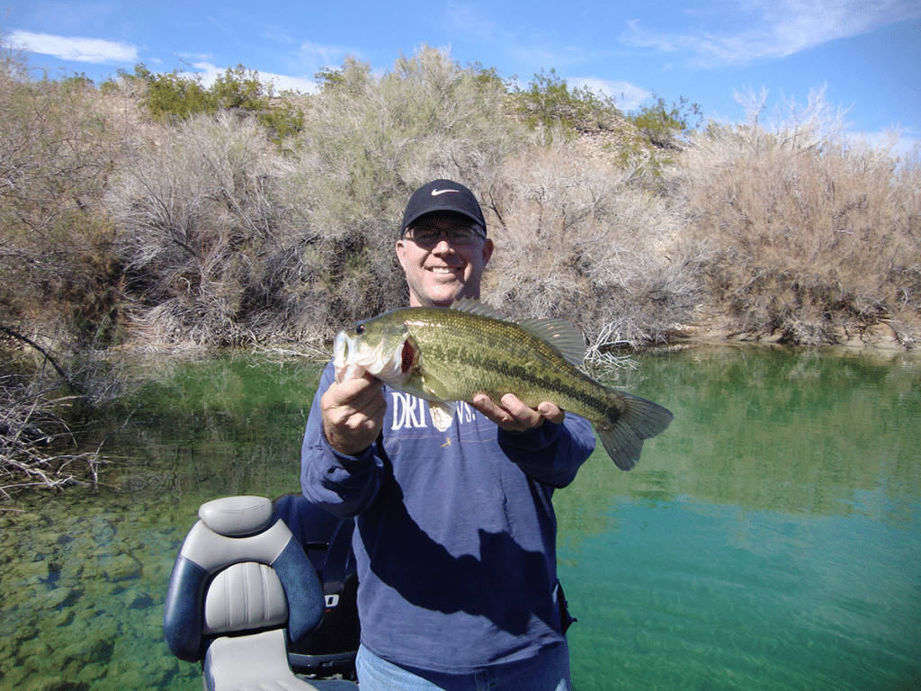 Lake mohave fishing report march 14 2018 for Lake mohave fishing