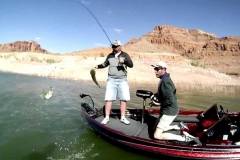 bass_boat_fishing
